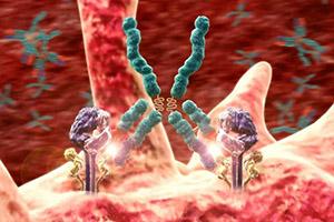 коламинфосфат и аутоиммунные заболевания